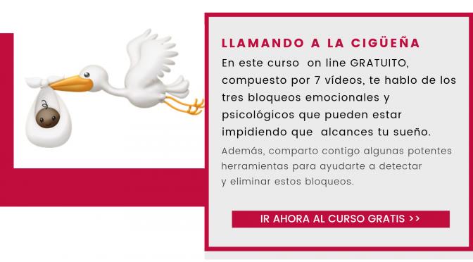"""CURSO ON LINE GRATUITO """"LLAMANDO A LA CIGÜEÑA"""""""